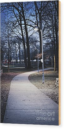 Park Path At Dusk Wood Print by Elena Elisseeva