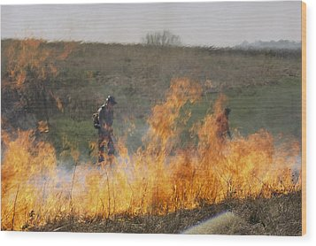 Park Workers Set A Controlled Fire Wood Print by Annie Griffiths