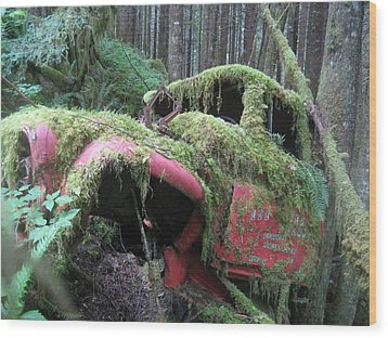 Parked For A While Wood Print by Shawn Hegan