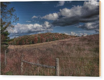 Parkway Fence Wood Print by Todd Hostetter