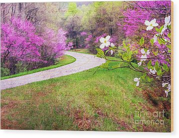 Parkway Kind Of Spring Wood Print by Darren Fisher