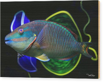 Parrot Fish With Glass Art Wood Print by David Salter
