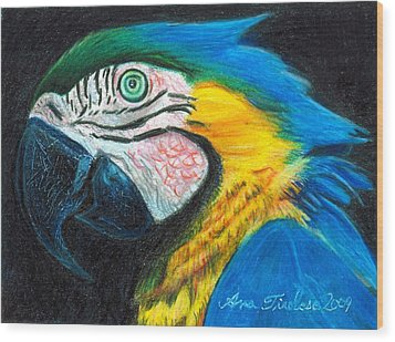Wood Print featuring the drawing Parrot Miniature by Ana Tirolese