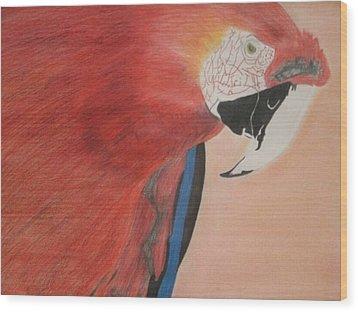 Parrot Wood Print