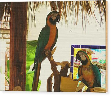 Wood Print featuring the photograph Parrots Of Penasco by Rand Swift