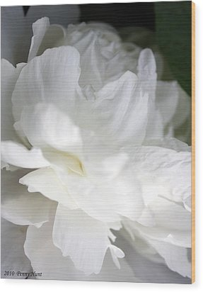 Wood Print featuring the photograph Passionate About Peonies by Penny Hunt