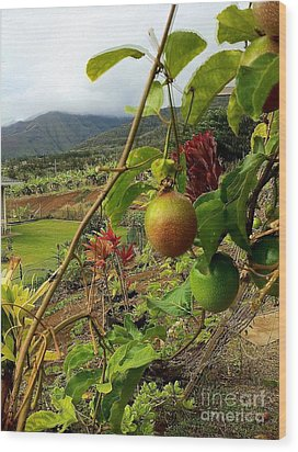 Passionfruit On The Vine With A View Of The Valley   Maui Wood Print by J R Stern