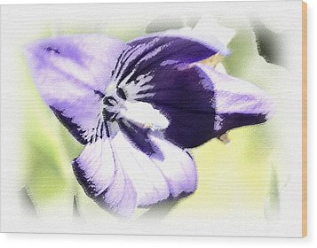 Pastel Iris Wood Print by Susan Leggett