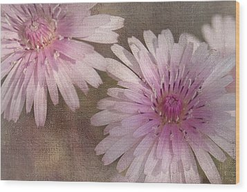 Pastel Pink Passion Wood Print by Benanne Stiens