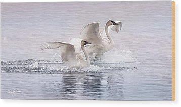 Pastel Swans Wood Print