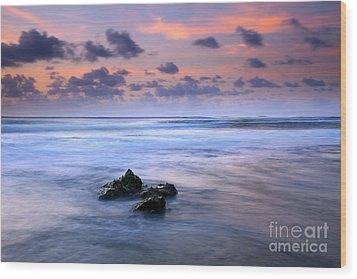 Pastel Tides Wood Print by Mike  Dawson