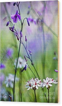 Pastel Wildflowers Wood Print by David Lade
