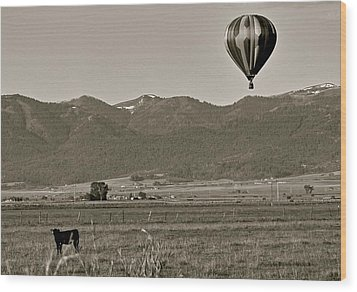 Wood Print featuring the photograph Pastoral Surprise by Eric Tressler
