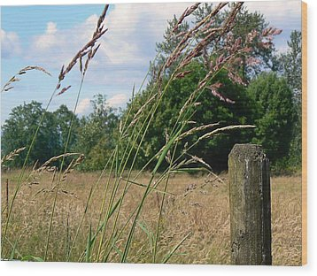 Pasture Grass Wood Print by Pamela Patch