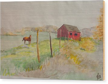 Pasture In Lagrangeville Wood Print