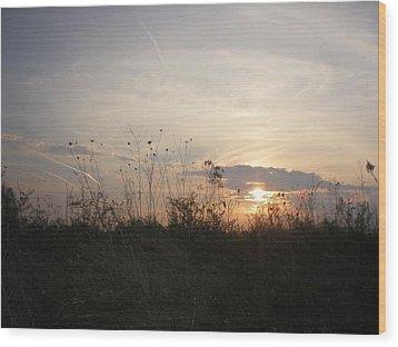 Pasture Sunset Wood Print