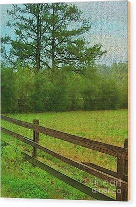 Pastureland Wood Print by Judi Bagwell