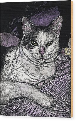Patches The Cat Wood Print by Robert Goudreau