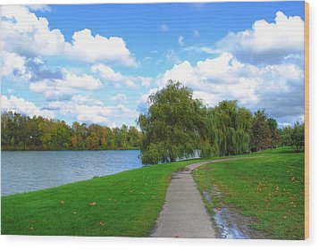 Wood Print featuring the photograph Path by Michael Frank Jr