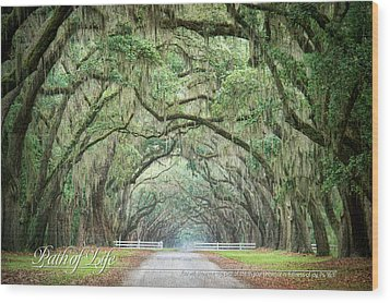 Path Of Life 1 Wood Print by Mary Hershberger