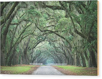 Wood Print featuring the photograph Path Of Life 4 by Mary Hershberger