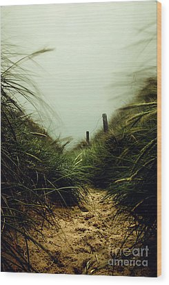 Path Through The Dunes Wood Print by Hannes Cmarits