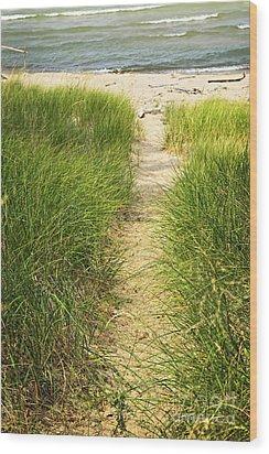 Path To Beach Wood Print by Elena Elisseeva
