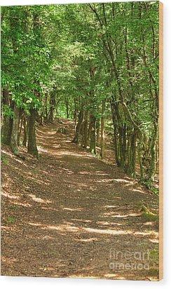 Path To Ciucaru Mare Peak Wood Print by Gabriela Insuratelu