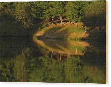 Patterns Of Nature Wood Print by Karol Livote