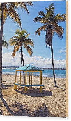 Pavilion On A Beach In Arecibo Wood Print by George Oze