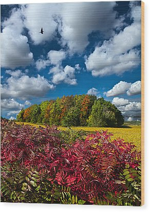 Peace Of Mind Wood Print by Phil Koch