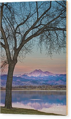 Peaceful Early Morning Sunrise Longs Peak View Wood Print by James BO  Insogna
