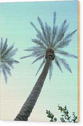 Peaceful Palms Wood Print