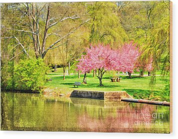 Peaceful Spring II Wood Print by Darren Fisher