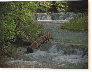 Peaceful Stream Wood Print by Cindy Rubin