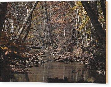 Peaceful Stream Wood Print