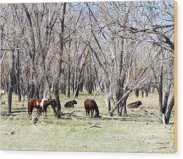 Wood Print featuring the photograph Peaceful Together by Clarice  Lakota