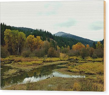 Peaceful Waters Near Coeur D'alene Wood Print by Cindy Wright