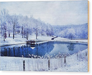 Peaceful Winters Day Wood Print by Darren Fisher