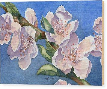 Peach Blossoms Wood Print by Marsha Elliott