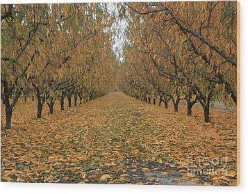 Peach Leaves Wood Print
