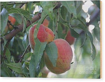 Peachy Morning Wood Print by Yumi Johnson