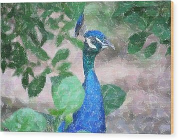 Wood Print featuring the photograph Peacock by Donna  Smith