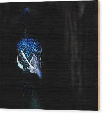 Peacock In The Dark Wood Print by Radoslav Nedelchev