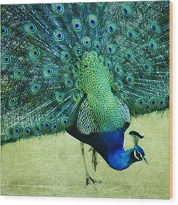 Peacock Pride Wood Print