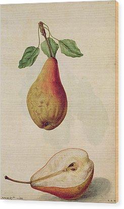 Pear   Pyrus Communis Wood Print by J le Moyne de Morgues