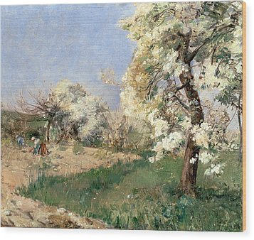 Pear Blossoms Wood Print by Childe Hassam