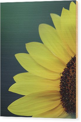 Wood Print featuring the photograph Pedals Of Sunshine by Cathie Douglas