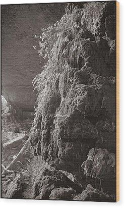 Pedernales Falls Tx Wood Print by Julie VanDore
