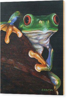 Peek-a-boo Frog Wood Print by Brian Carlton